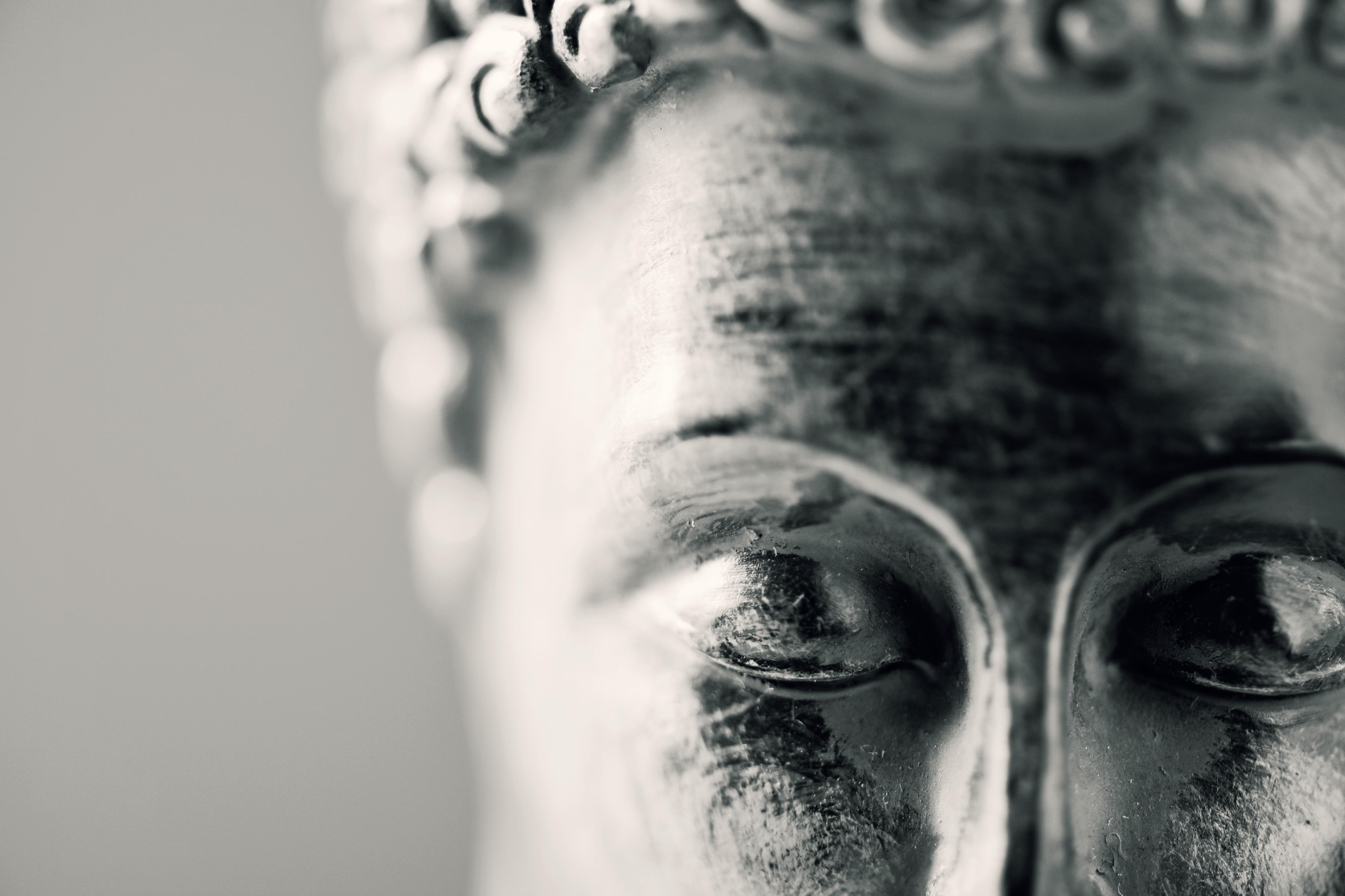 buddhareverse-min